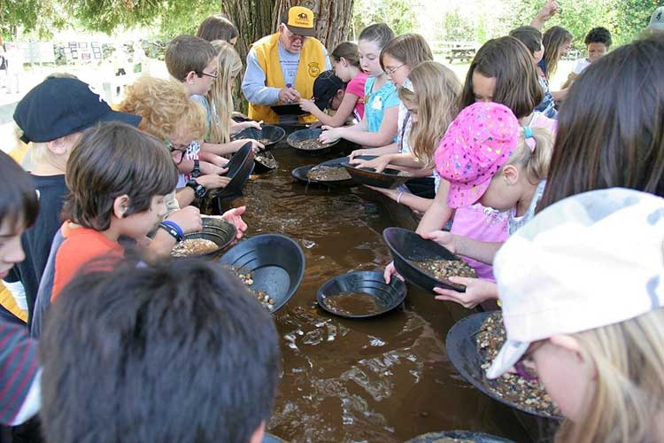 Gold Panning at South Yuba River State Park